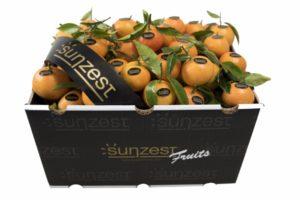 mandarina-sunzestfruits