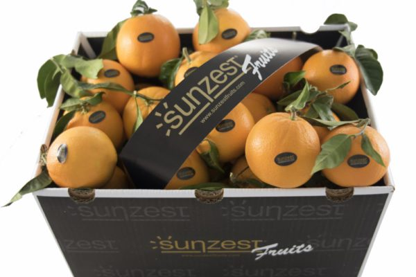 sunzest-fruits-frutas_01