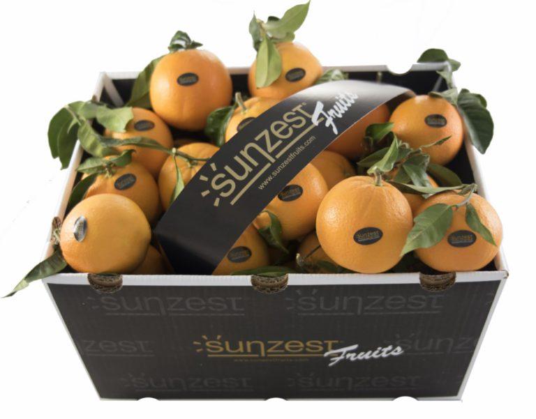 sunzest-fruits-frutas_01