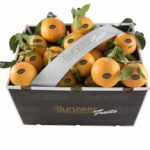 sunzest-fruits-naranjas