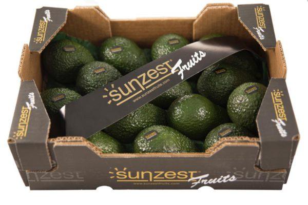 aguacates-hass-sunzestfruits-2